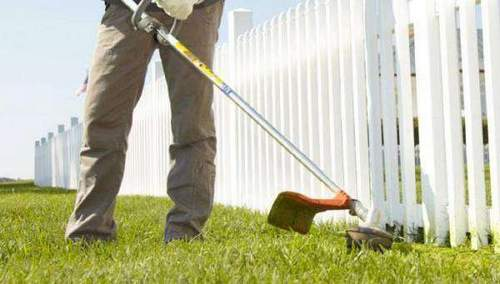 Gasoline Trimmers Which Firms are Better to Pick