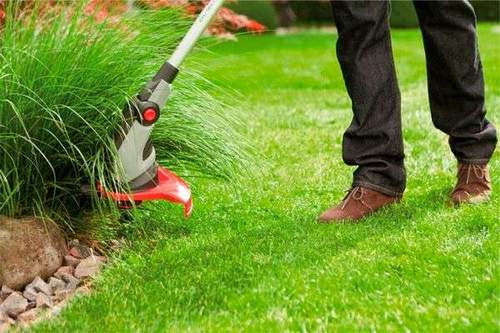 Grass Petrol Trimmer Which is Better