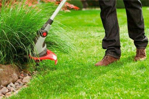 How to Choose a Grass Trimmer Gasoline And Electric