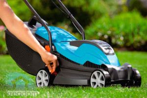 Lawn Mower Gasoline Manual How to Choose