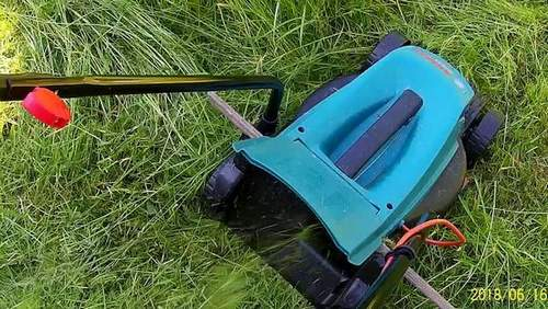 What Grass Can You Mow With A Lawn Mower?