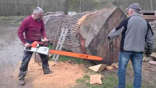 What Is The Most Interesting Saw Part
