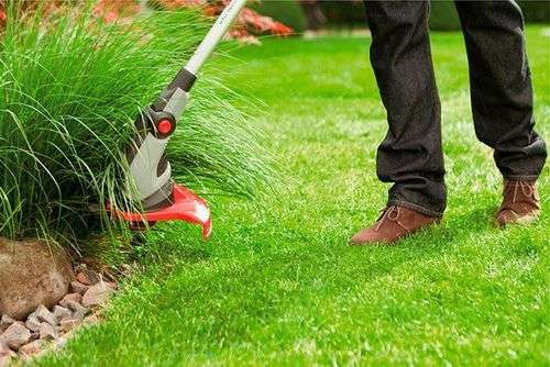 Which Line For The Trimmer Is Better To Mow Grass
