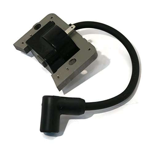 Adjustment Of The Ignition Coil On The Trimmer