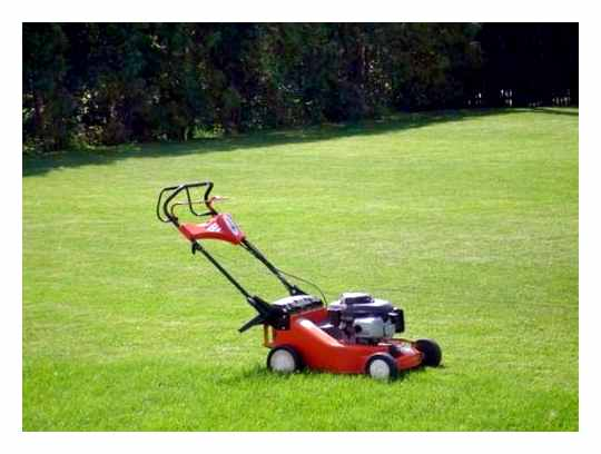 Gasoline Or Electric Lawn Mower Which Is Better