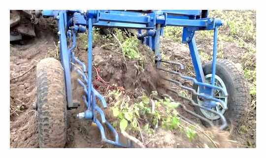 How To Make A Potato Digger For A Tiller With Your Own Hands