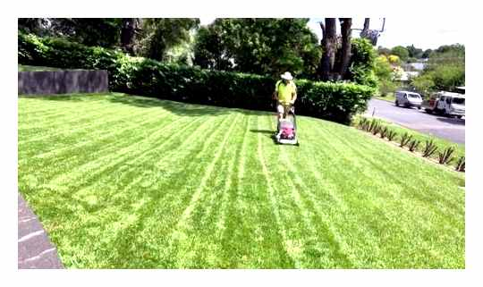 How To Properly Line The Lawn Mower