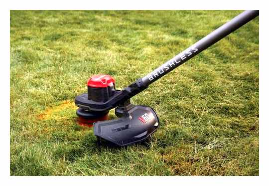 Lawn Mower Or Trimmer Which Is Better