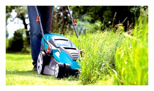 Why The Lawnmower Does Not Collect The Grass In The Grass Catcher